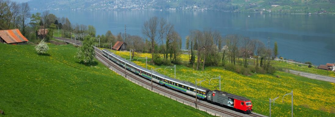 pre-alpine-train