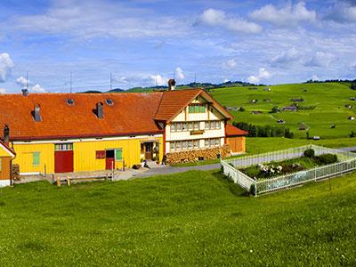 Farm Stay Tours