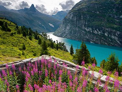 Switzerland Peak Tour – S802